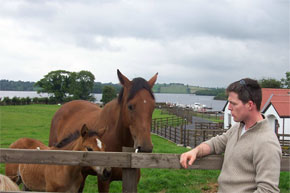 Horse whispering at Swan Island on the Shannon/Erne Waterway.