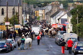 The Banagher horse fair